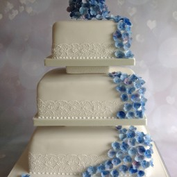 Sue's Cakes