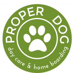 Proper Dog Day Care & Home Boarding