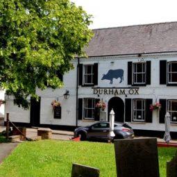 Durham Ox, Orston